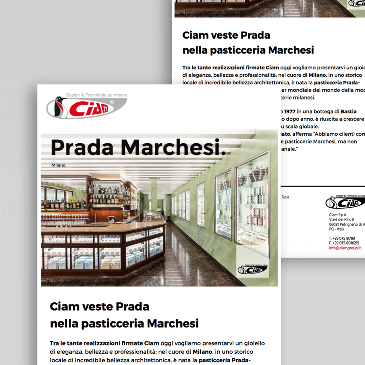 Ciam - newsletter